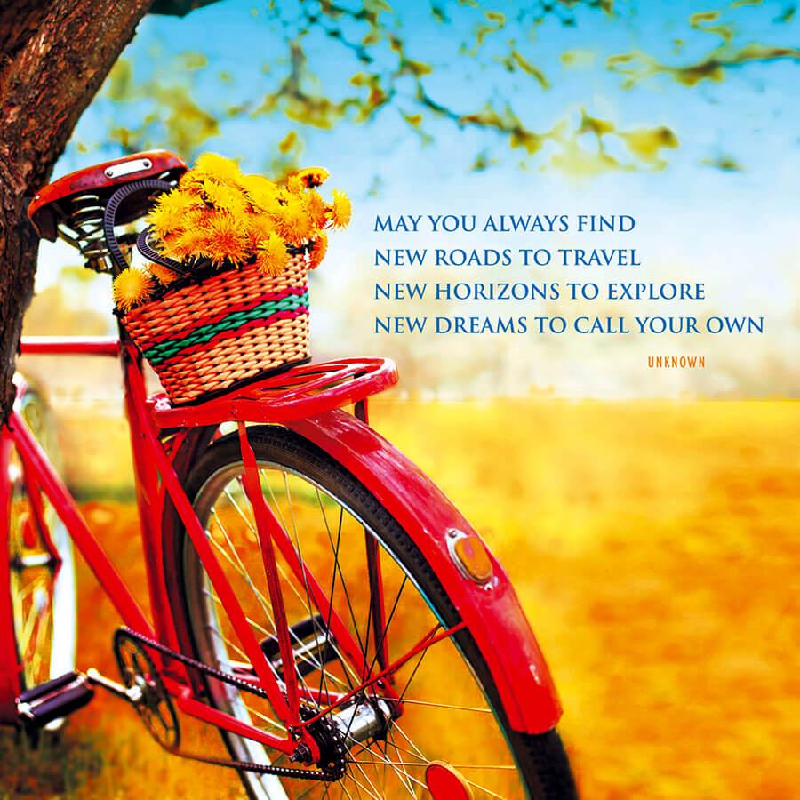 IN91 Bike Ride
