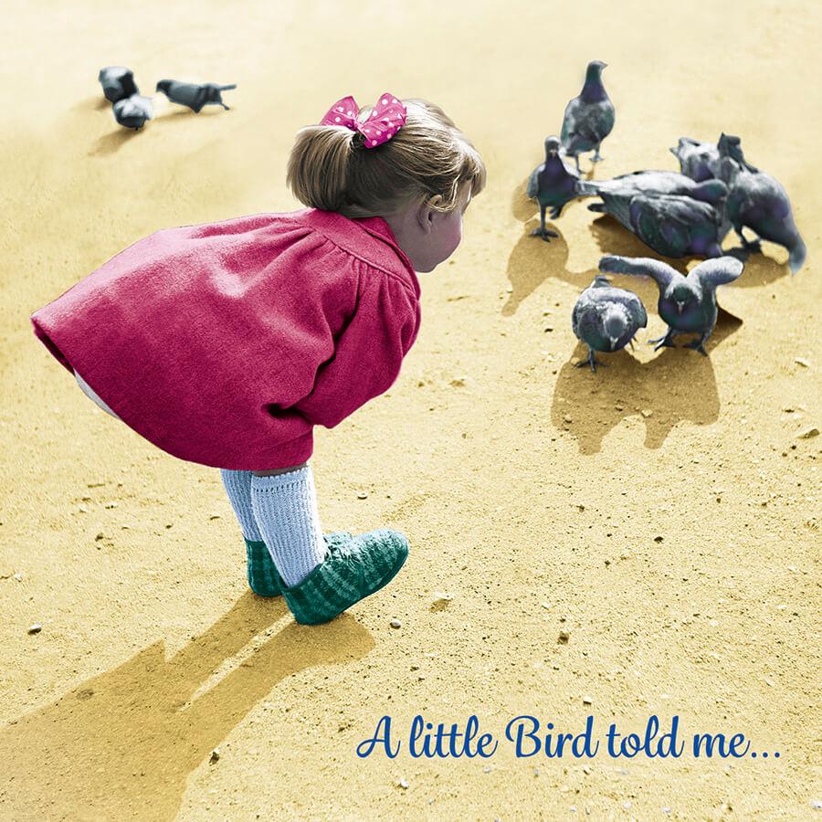 BA254 Little Bird